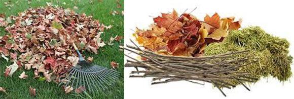 Yard Waste - leaves, twigs, grass